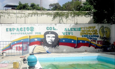 Alexis Vive Collective Pool