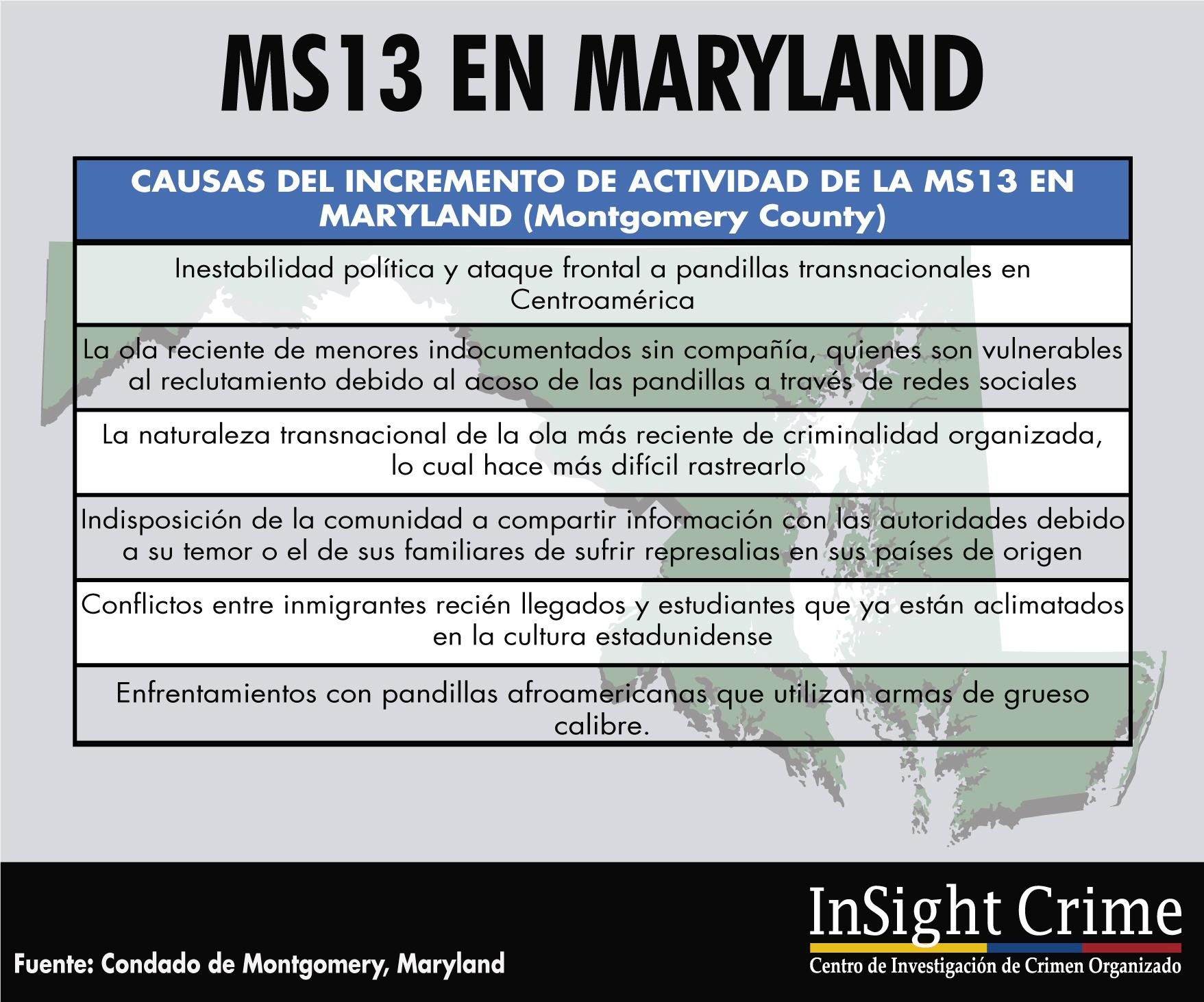 Info MS132 Espanol