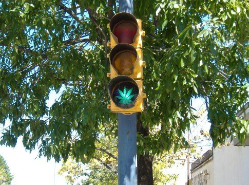 A proponent of Uruguay's marijuana bill
