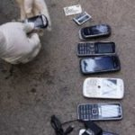 Cell phones found in Infiernito in 2012