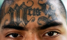 The MS13 is now active in Spain