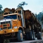 A truck transports timber in Costa Rica