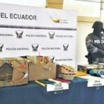 Drugs seized by Quito police