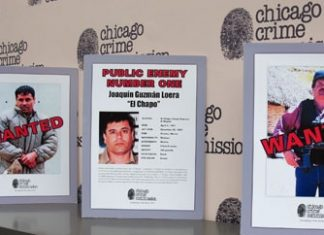 """El Chapo"" Guzman, Chicago's Public Enemy Number One"