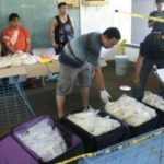Meth seized in Philippines in raid linked to Sinaloa Cartel