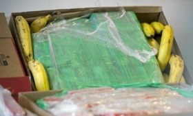 Cocaine in a banana shipment in Berlin, Germany