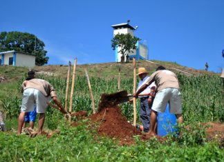 El Salvador gang members learning to farm