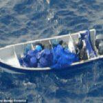Drugs seized off Ecuador's Galapagos Islands