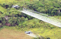 Colombia aerially eradicated 47,000 hectares in 2013