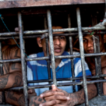 From the cover of the Salvadoran prisons report