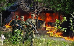 Colombian soliders destroy a cocaine laboratory