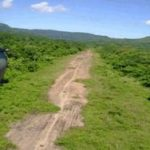 Clandestine landing strips on the rise