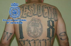 "Spanish National Police photo of ""Mexicano"""
