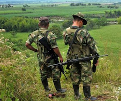 FARC militants overlook a field