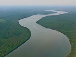 The Amazon River in Brazil