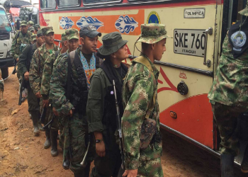 The number of FARC troops expected to demobilize is smaller than many had hoped
