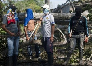 Colombia has seen a recent surge in coca farmer blockades against eradicators