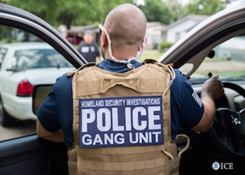 A recent US anti-gang operation led to more than 1,300 arrests