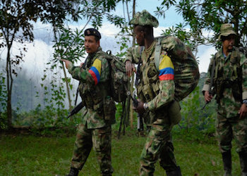 Members of Colombia's FARC