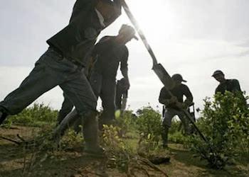 Colombia dice que invertirá US$315 millones en cuatro años en su política contra la coca