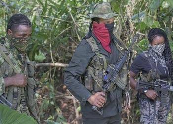 Combatientes guerrilleros pertenecientes al ELN