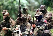 Guerrilleros del ELN podrían estar planeando un ataque en Ecuador