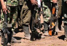 Unos US$18 por día pagan los grupos guerrilleros a los venezolanos