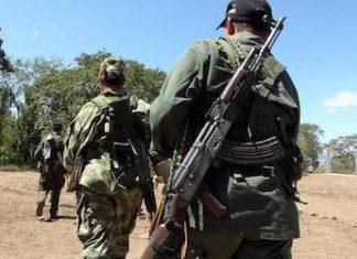 Las Naciones Unidas han revelado un aumento de las masacres en Colombia