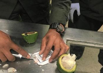 La Policía Metropolitana de Santa Marta, en Colombia, incauta droga escondida en Aguacates ©ElTiempo